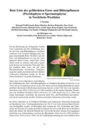 Rote Liste der gefährdeten Farn- und Blütenpflanzen ... - LANUV NRW