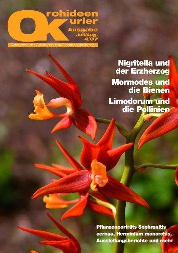 Nigritella und der Erzherzog Mormodes und die Bienen Limodorum ...
