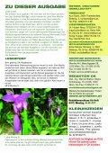 Nigritella und der Erzherzog Mormodes und die Bienen Limodorum ... - Seite 2