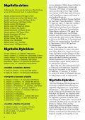 Nigritella und der Erzherzog Mormodes und die Bienen Limodorum ... - Seite 6