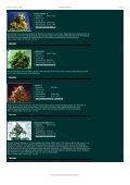 Samen und wo man sie bestellen kann - Seite 6