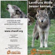 Lernt uns Wölfe besser kennen..