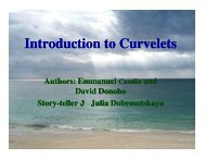 Introduction to Curvelets