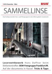 pdf-Download des Heftes - BSW