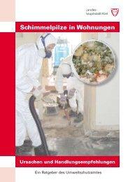 Schimmelpilze in Wohnungen - Ursachen und - Landeshauptstadt Kiel