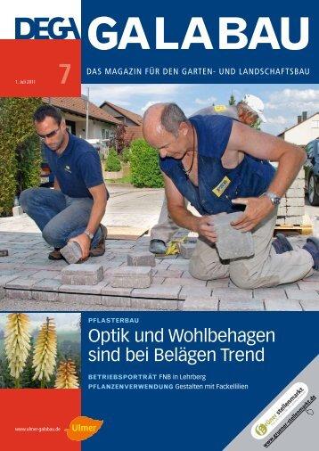 DEGA-Bericht FNB komplett.pdf