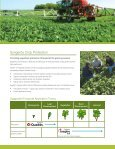 The Syngenta Advantage for Sugarbeets - Page 3