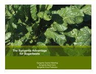 The Syngenta Advantage for Sugarbeets