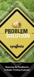 Removing the Roadblocks to Higher Yielding Soybeans