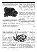 Obsah tohoto čísla - Page 7