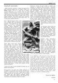 Sauilo 05/2005 (Austró) - ASATRU - Page 3
