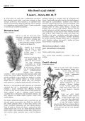 Sauilo 05/2005 (Austró) - ASATRU - Page 4
