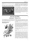 Sauilo 05/2005 (Austró) - ASATRU - Page 7