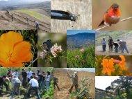 Volunteer Restoration Programs