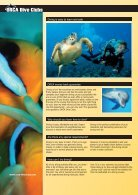 Brochure ORCA Dive Clubs - Page 4