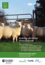 Building a Profitable Sheep Business