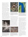 FINE - Page 4