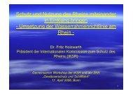 Schutz und Nutzung des Rheins miteinander in Einklang ... - IKSR