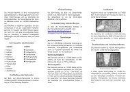 PDF-Datei - Nordost-Institut