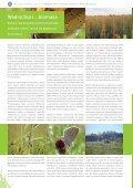 Ochrona wodniczki w Polsce Wschodniej - Page 2