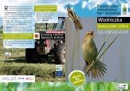 Wodniczka - Ogólnopolskie Towarzystwo Ochrony Ptaków