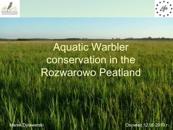 Aquatic Warbler conservation in the Rozwarowo Peatland
