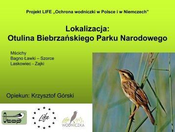 Lokalizacja Otulina Biebrzańskiego Parku Narodowego