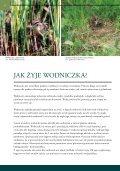 Osiągnięcia projektu LIFE Wodniczka - Page 6