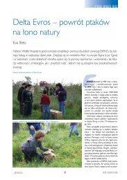 Delta Evros – powrót ptaków na ∏ono natury