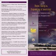 Basal Ganglia Dopamine & Learning