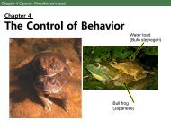 The Control of Behavior