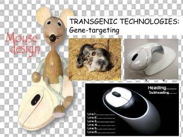 TRANSGENIC TECHNOLOGIES Gene-targeting