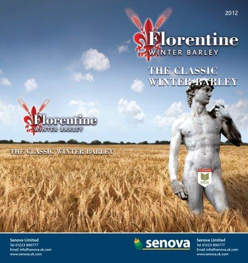 Florentine Variety Card 12.11 - Wynnstay