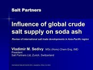 Influence of global crude salt supply on soda ash