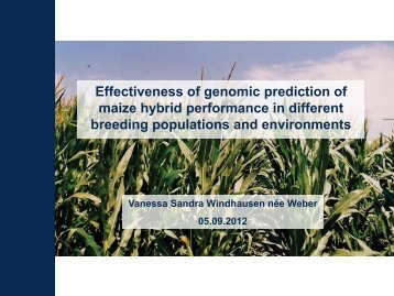 Effectiveness of genomic prediction of maize hybrid performance in ...