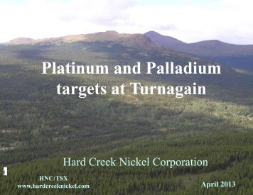 Platinum and Palladium targets at Turnagain
