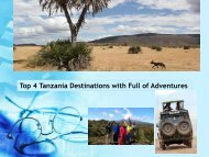 Top 4 Tanzania Destinations with Full of Adventures