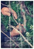 Gulfi Wine & Resort brochure - Azienda Agricola Gulfi - Page 5