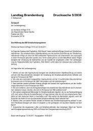 Landtag Brandenburg Drucksache 5/3938