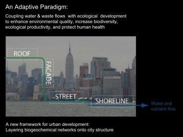 An Adaptive Paradigm