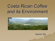 Costa Rican Coffee and its Environment