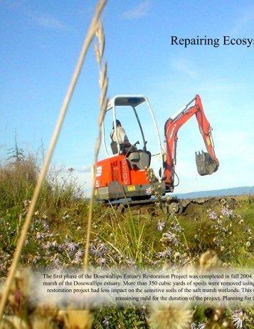 Repairing Ecosys
