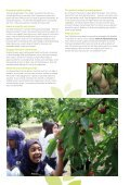School orchards - Page 3