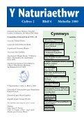 Y Naturiaethwr - Page 3