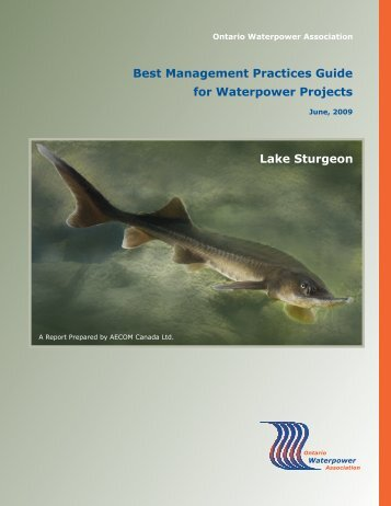 Best Management Practices Guide for Waterpower Projects Lake Sturgeon