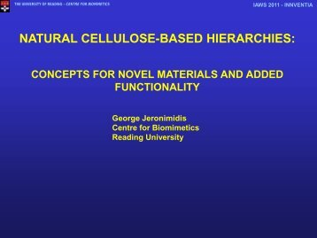 NATURAL CELLULOSE-BASED HIERARCHIES