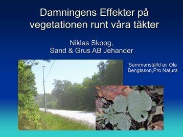 Damningens Effekter på vegetationen runt våra täkter