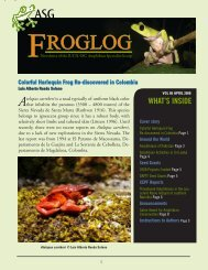 2008 - Year of the Frog - Activities from Sri Lanka - Amphibian ...