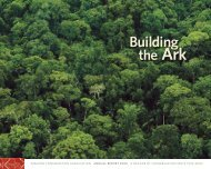 WhAt We Do - Amazon Conservation Association