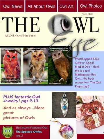 owl_eye_001.pdf